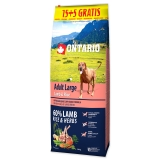 ONTARIO Dog Adult Large Lamb & Rice & Turkey 15+5 kg 20kg