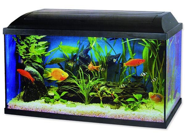 Akvarium set CAT-GATO 100 x 40 x 40 cm 160l POUZE OSOBNÍ ODBĚR