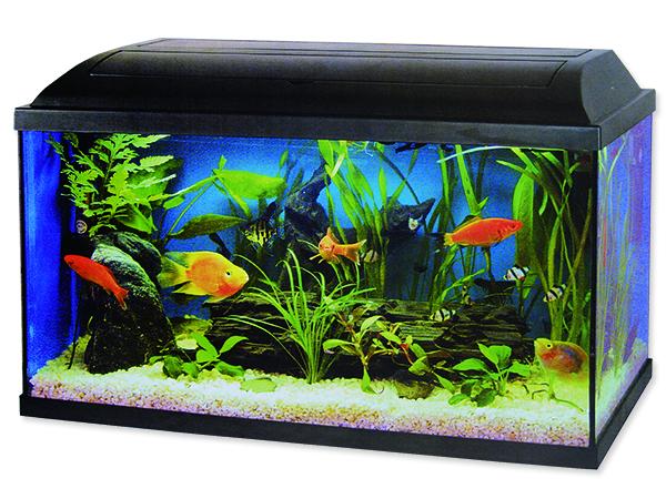 Akvarium set CAT-GATO 80 x 30 x 40 cm 96l POUZE OSOBNÍ ODBĚR
