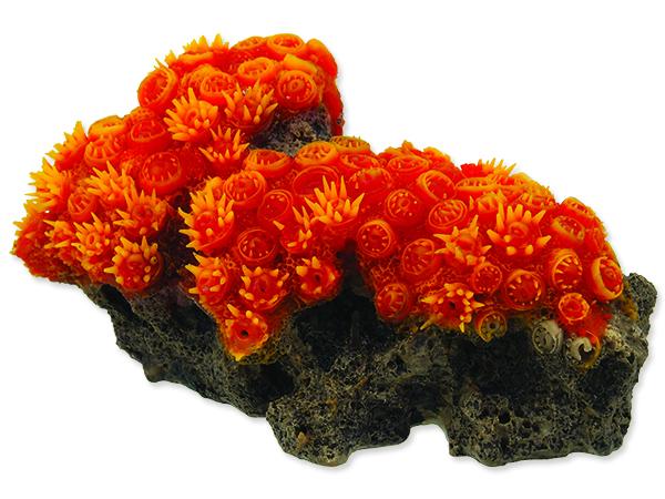 Dekorace AQUA EXCELLENT mořský korál oranžový 1ks