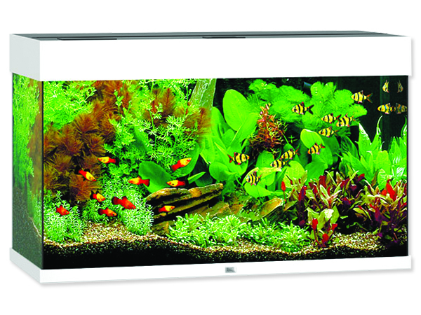 Akvárium set JUWEL Rio LED 125 bílé 125l POUZE OSOBNÍ ODBĚR