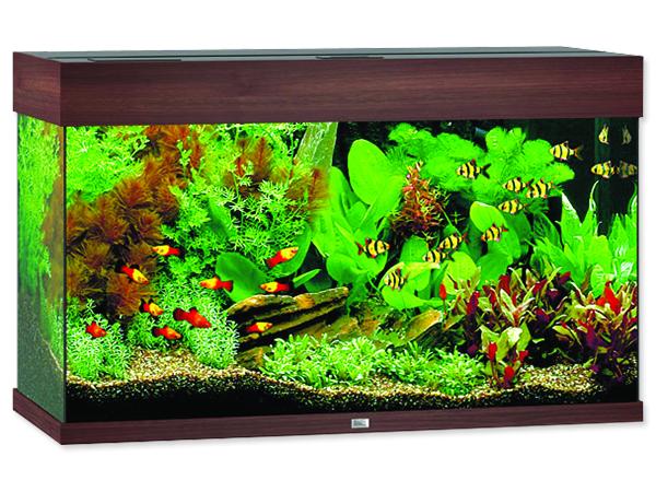 Akvárium set JUWEL Rio LED 125 tmavě hnědé 125l POUZE OSOBNÍ ODBĚR