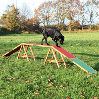 Kladina TRIXIE Dog Activity Agility 456 x 64 x 30 cm
