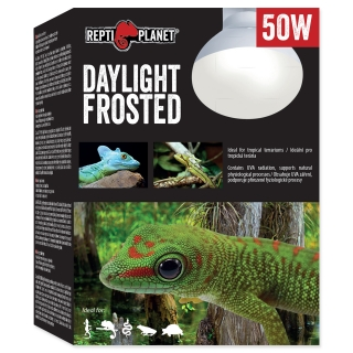 Žárovka REPTI PLANET Daylight Frosted 50W